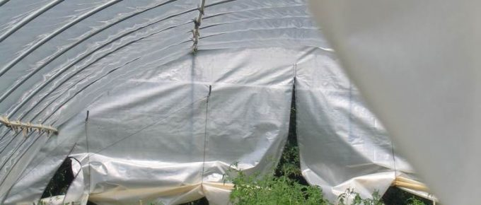 Instructions to Build a PVC Hoop House for Your Garden