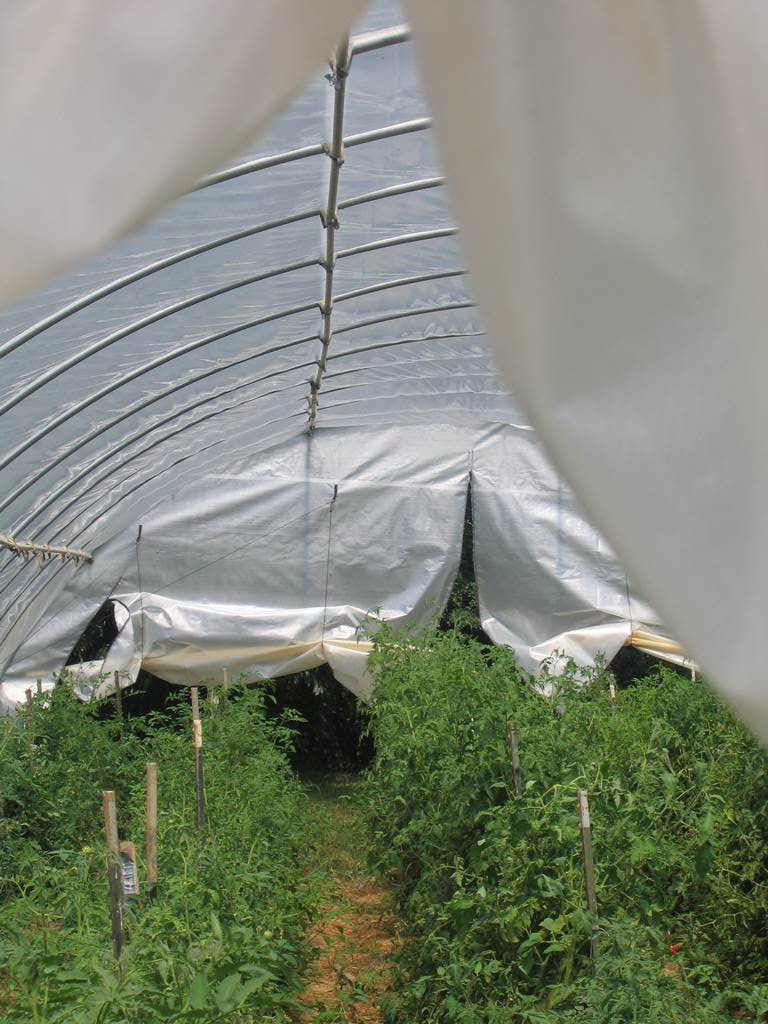 Easy Instructions to Build a PVC Hoop House for Your Garden