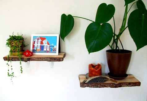DIY Project: Rustic Log Shelves
