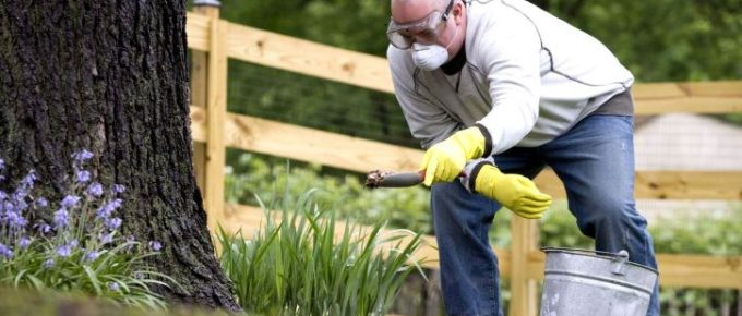 When During the Year Should You Fertilize Your Lawn?