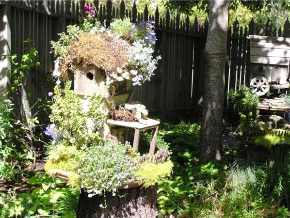 How to Create a Bird Garden