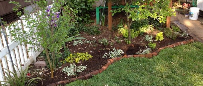 Using Bricks as Gardening Edging: A Cheap Alternative
