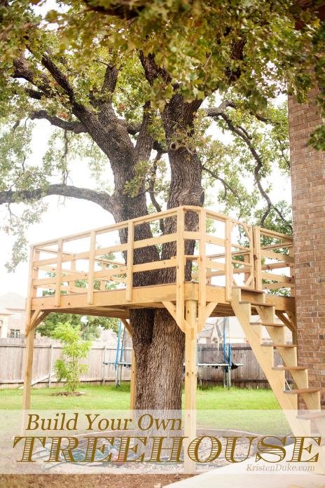 Build Your Own DIY Tree Deck