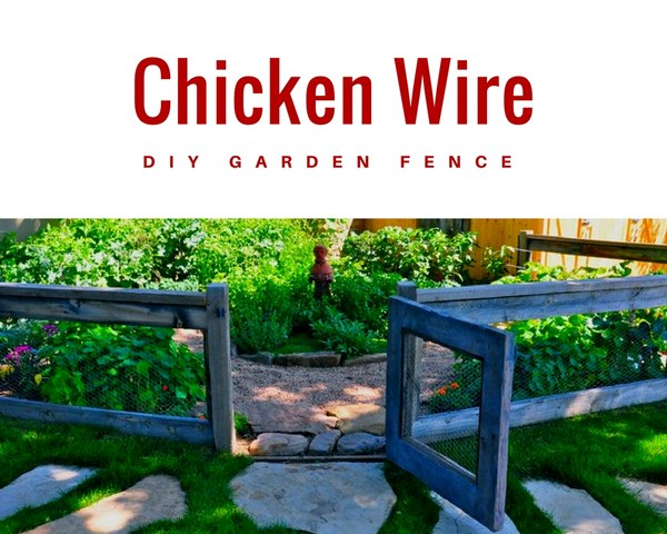 Chicken Wire DIY Garden Fence