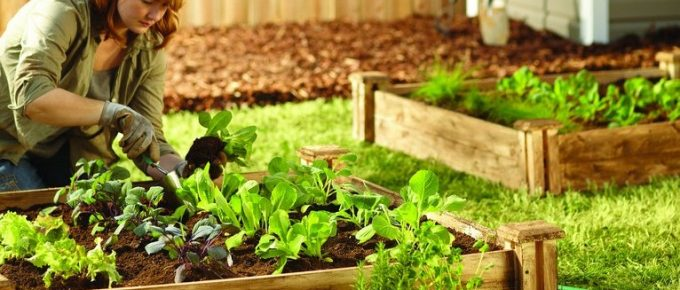How to Make a Raised Bed in a Garden