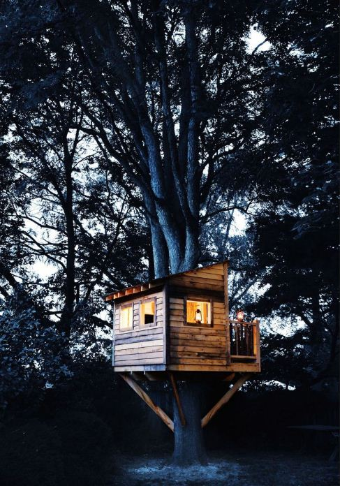 DIY Wood Sided Tree house in the Backyard
