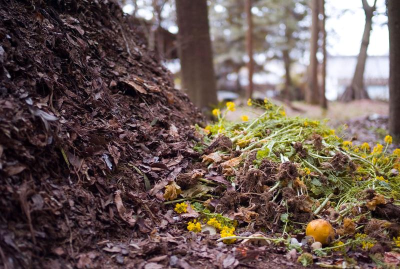 Neighbor's Compost - Gardening Composting Why and What