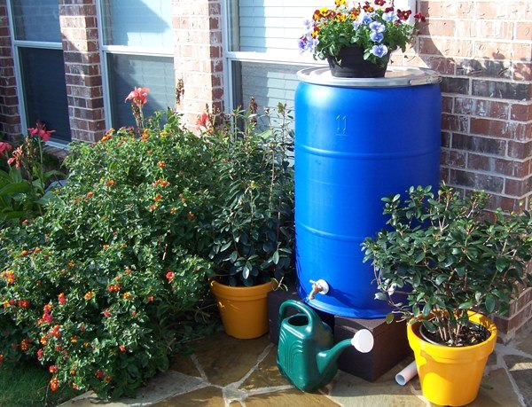 Harvesting Rainwater - How to Conserve and Use Rainwater
