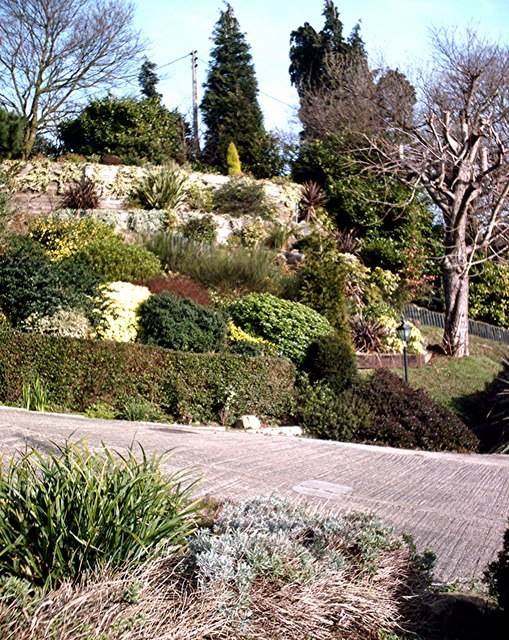 Easy Hillside Landscape Ideas: Ideas for Landscaping a Hillside