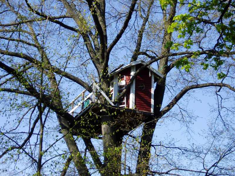 DIY Treehouse: How to Build a Treehouse
