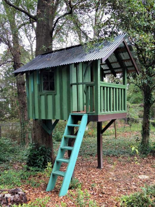 Simple Tree House DIY: Building Your Own Tree House By Charles Wesley Orton