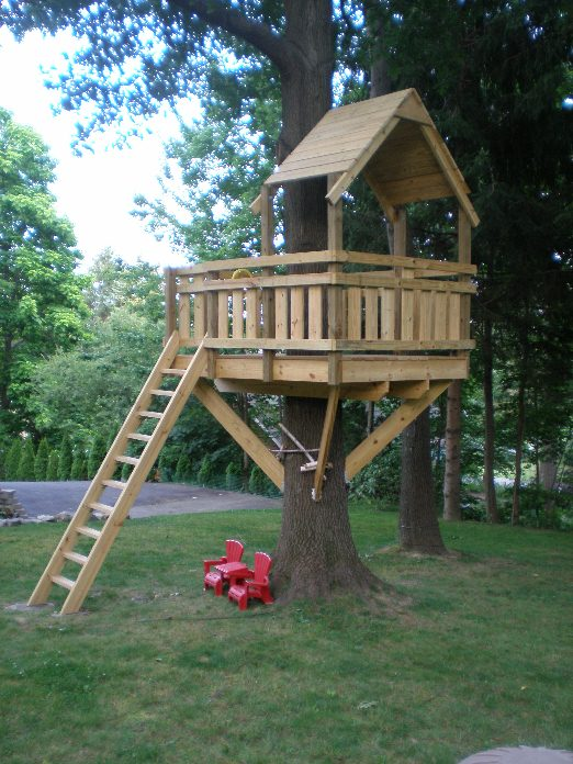The Basic One Tree House