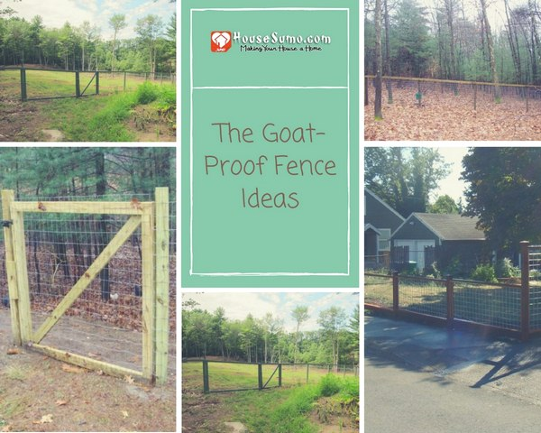 The Goat-Proof Fence Ideas