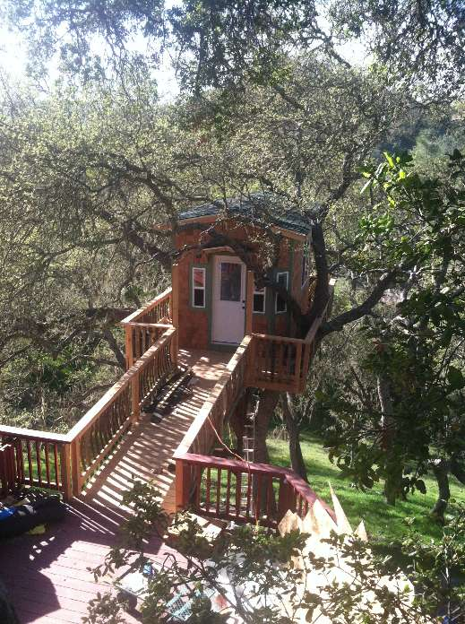 The Tree House With a Deck by ArborCasa