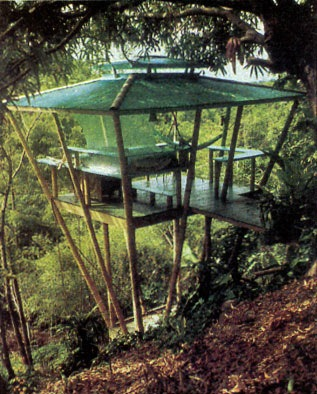 The Unique Mother Earth Tree House