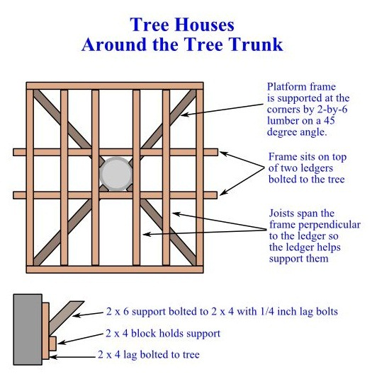 Tree House - Around the Trunk - How to Build a Treehouse