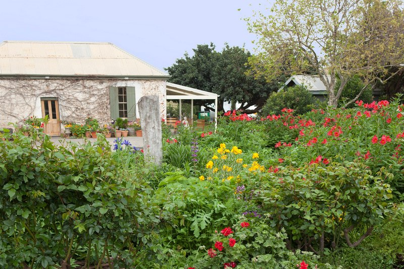 Your Cottage Garden - Guide to Cottage Gardening