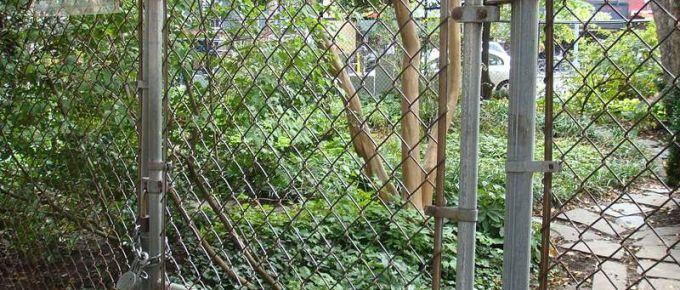 DIY Chain Link Fence: What Everybody Ought to Know