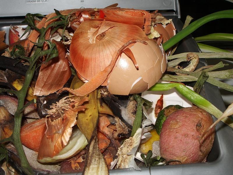 Vegetable Waste - Gardening Composting Why and What