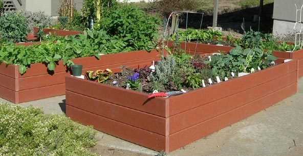 Recycled Plastic Raised Bed - DIY Raised Bed Garden: How to Make a Raised Bed Garden