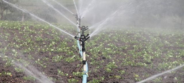 The Best Home Irrigation Systems for Watering Your Garden Plants