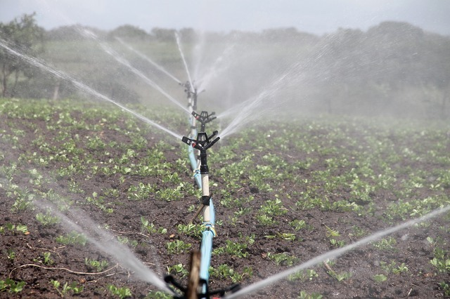 Sprinkler Irrigation Systems - The Best Home Irrigation Systems