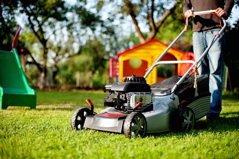Prevent and Avoid Lawn Diseases - How to Treat Lawn Disease Early in the Season