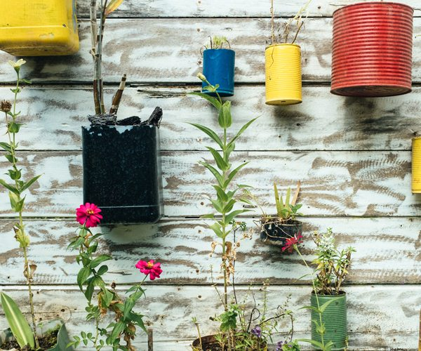 Ideas to Transform Small Garden Spaces