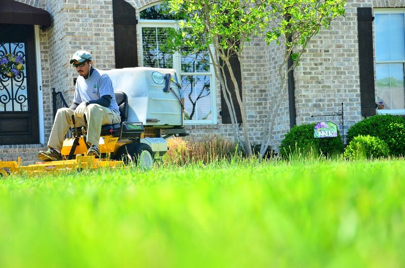Why You Should Hire a Lawn Care Service With Your Neighbors