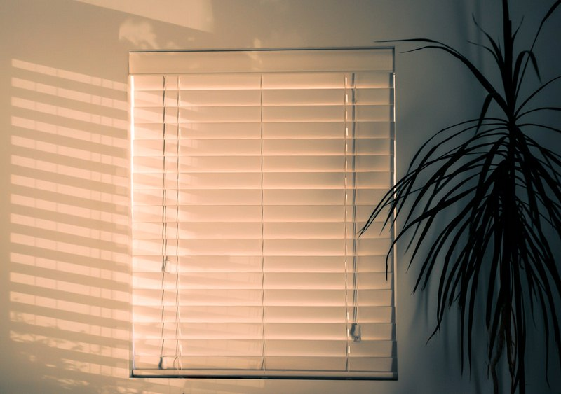 All About Eco-Friendly Windows, Awnings, Blinds and Shades
