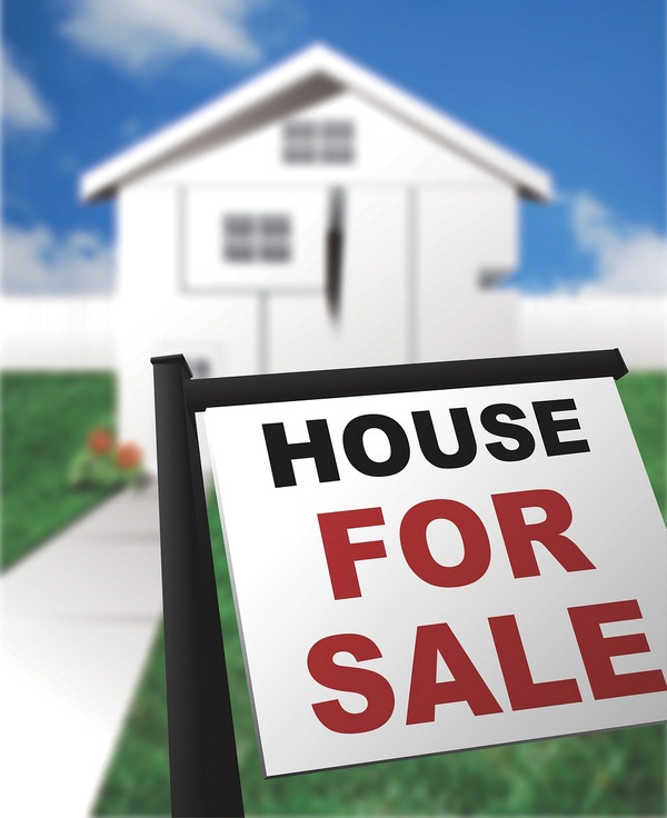 Green Home Sellers Guide How to Sell an Eco-Friendly House