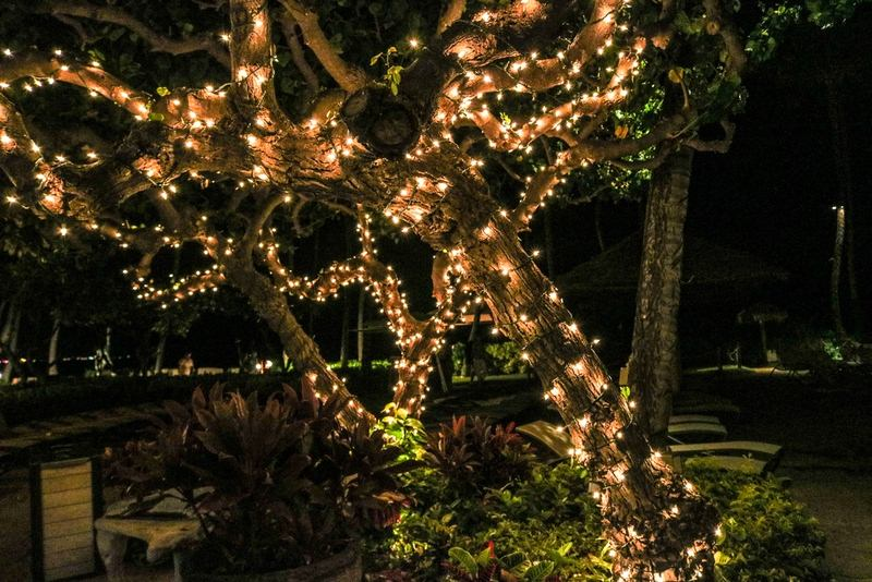 Outdoor Christmas Lights - Classic Outdoor Christmas Decor Lasts Past the Holidays