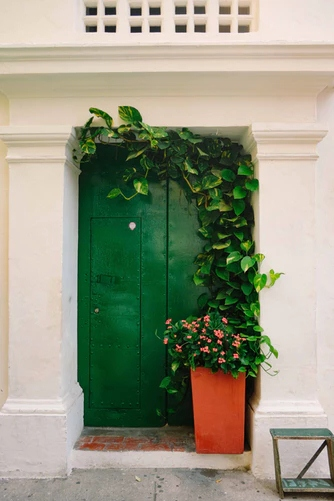 Pros and Cons of Different Door Materials