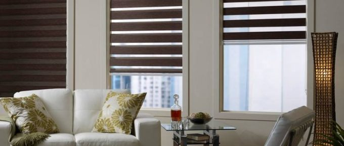 Reasons to Opt-in for Zebra Roller Shades for Your House