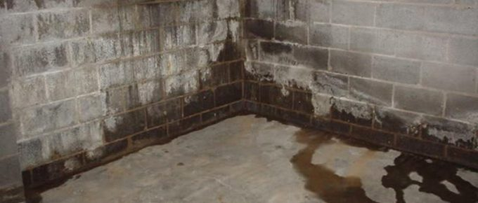 How Do I Fix Damp or Wet Corners in My Basement?