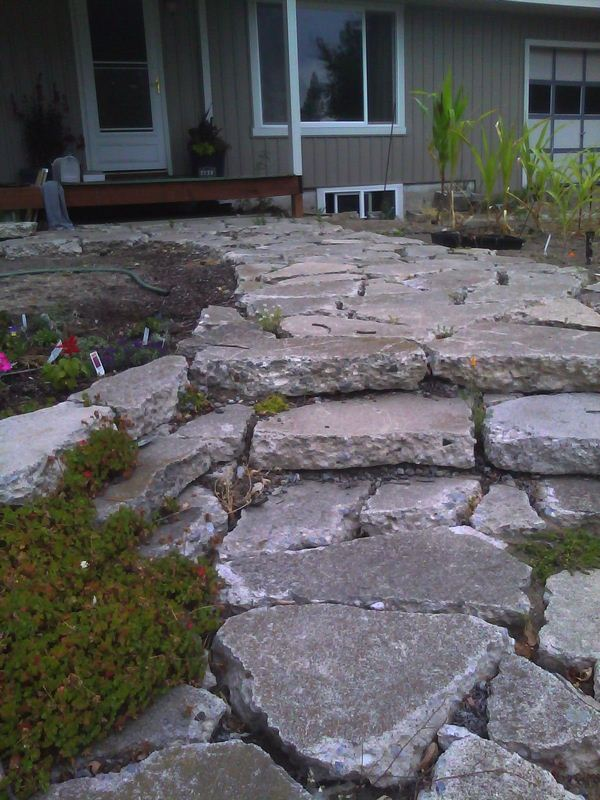 DIY Guide to Make Your Own Paving Stones