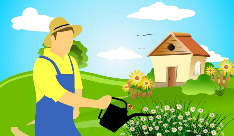 3 Improvements to Make Your Home More Green