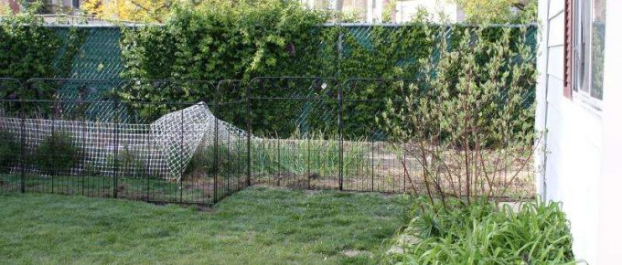 6 Top Benefits of Garden Fencing for Protecting and Beautifying Your Homes