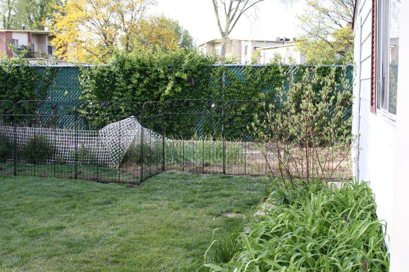 Top Benefits of Garden Fencing for Protecting and Beautifying Your Homes