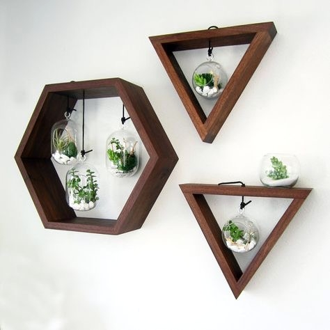Wall-mounted Plants