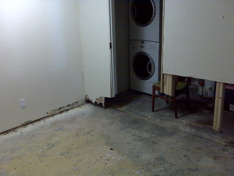 Is Your Basement Leaking or Flooding - Find Out How to Contact a Professional Service to Get Rid of the Problem