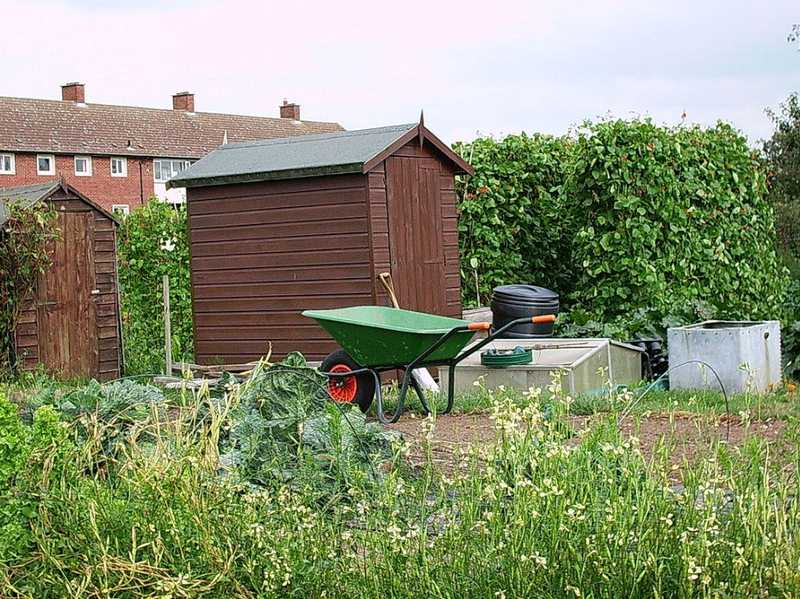 Apex Sheds are Ideal for Meeting All Your Needs for Garden Sheds