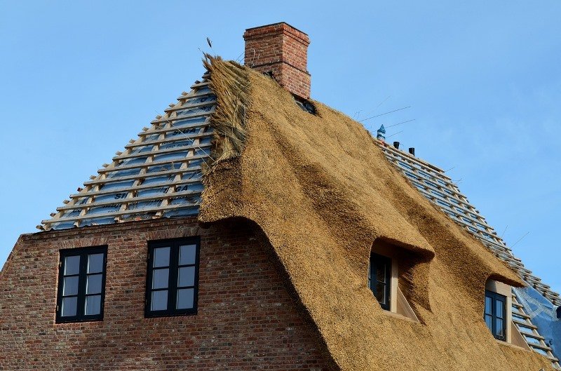 Roof Maintenance Does a Lot of Good for Homeowners and Is Suitable For the Environment Too