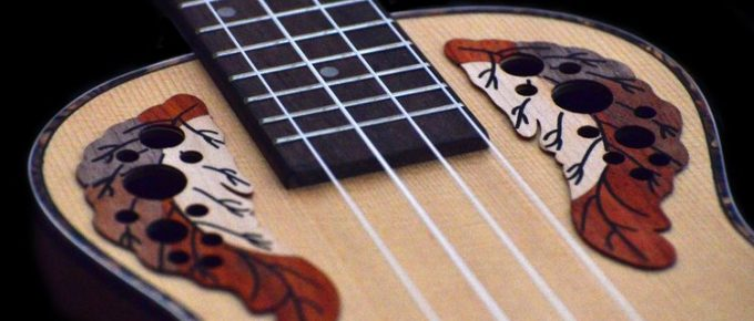 Ukulele Tutorials Learn Step-by-step From the Scratch
