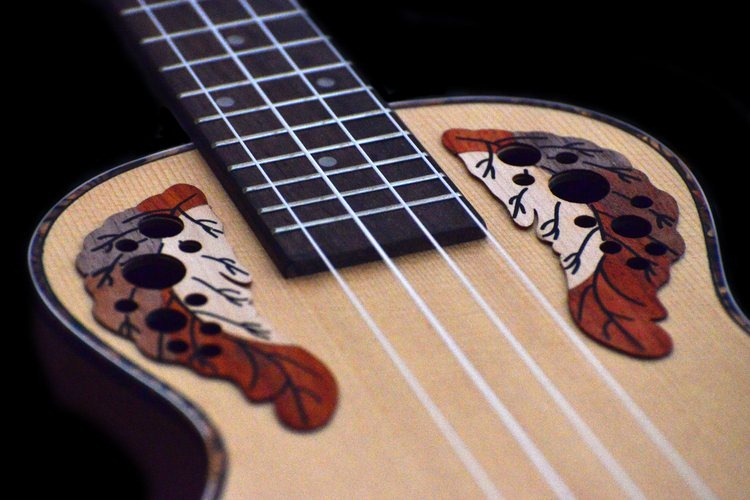 image - Ukulele Tutorials Learn Step-by-step From the Scratch