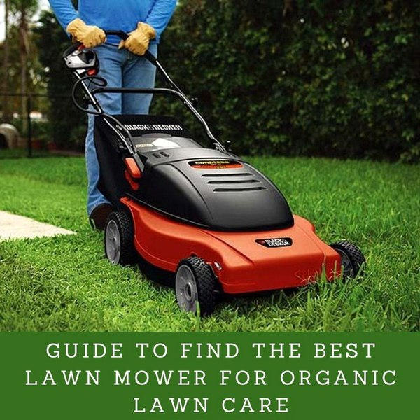 image - Guide to Find the Best Lawn Mower for Organic Lawn Care