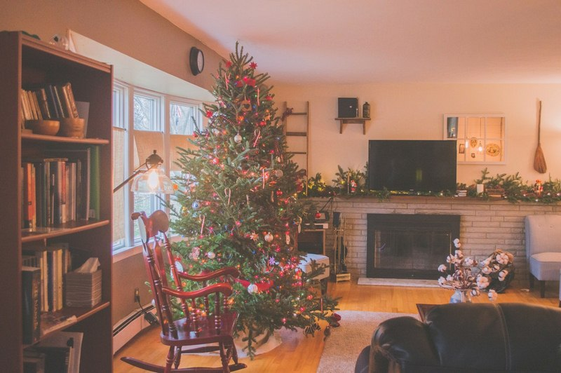 image - Caring for Your Living Christmas Tree After the Holidays