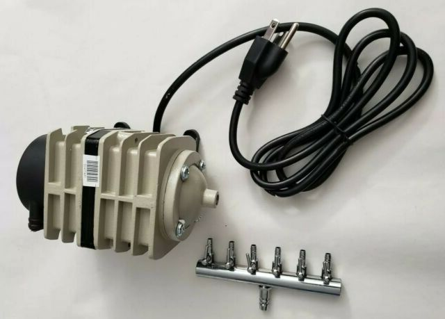image - How You Can Choose the Best Hydroponic Air and Water Pump