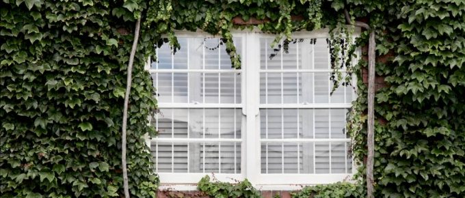 Points to Know Before Installing Blinds in Your Calabasas Home
