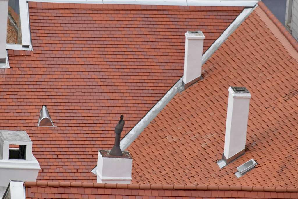 image - Homeowners Guide to Extending Your Roof's Lifespan